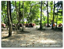 Camp grounds at Island #4 on the Similans