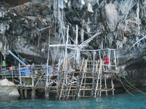Viking cave , Ko Phi Phi
