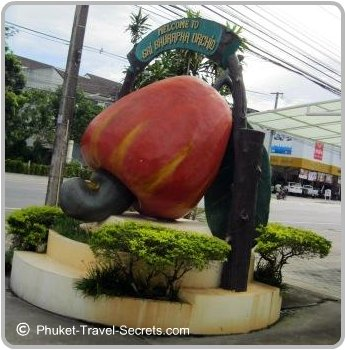 Cashew Nut Sign in Phuket.