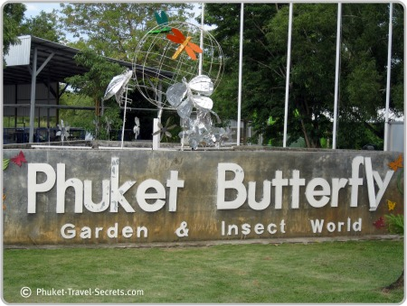 Phuket Butterfly Garden and Insect World.