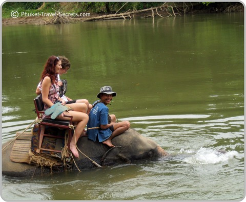 Elephant Trekking in the River Kwai, Kanchanaburi, Thailand.