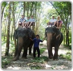 the kids enjoying the elephant rides in Phuket.