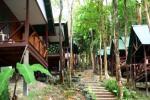 Green Valley Resort, Tonsai Bay Krabi