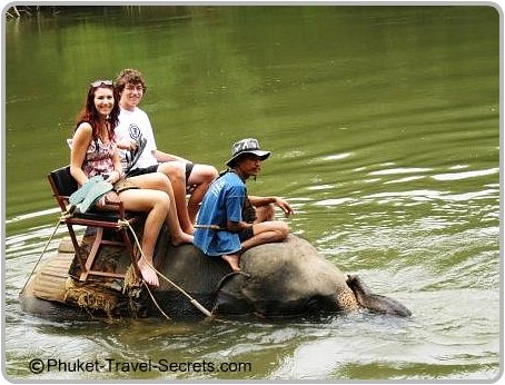Elephants trekking in the river Kwai Kanchanaburi.