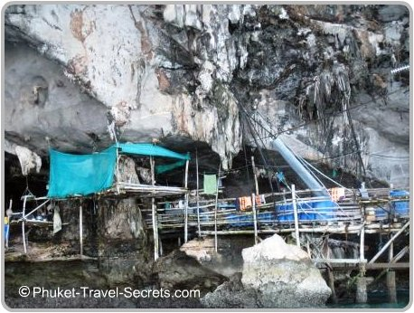 Viking Cave Pontoon