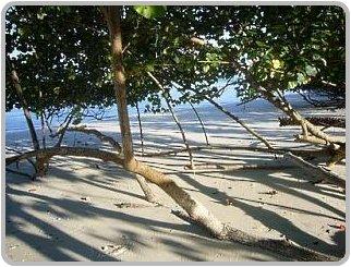 Naka Islands